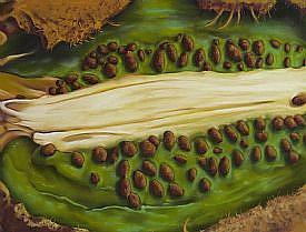 Detail Image for art Wildebeests Renewal