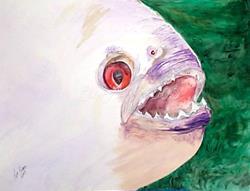 Art: Piranha    by Artist Lisa Morgan
