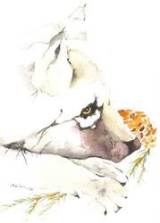 Art: 'WOLF CUB' by Artist Gretchen Del Rio