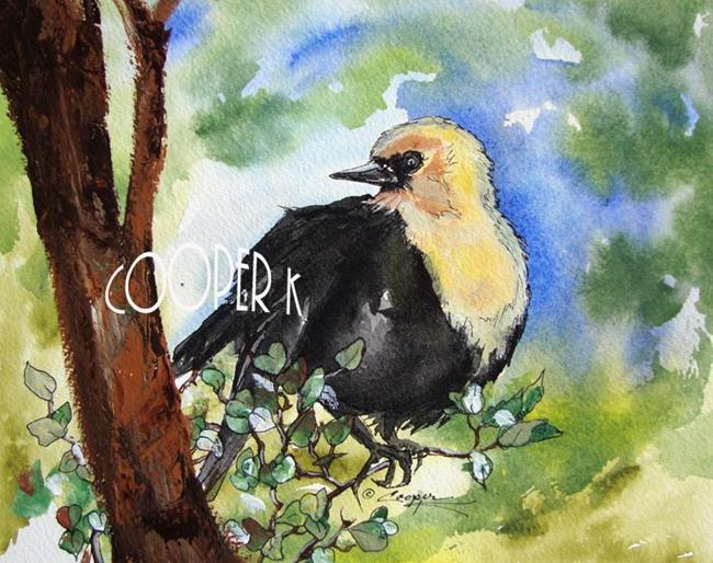 Art: Yellow headed black bird by Artist Dottie Cooper Katz