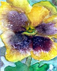 Art: Pansy4 by Artist Judith A Brody