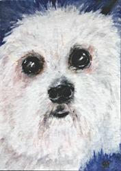 Art: Big Eyed Puppy ACEO by Artist Bonnie Pankhurst