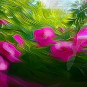 Detail Image for art Rose garden Unpromised