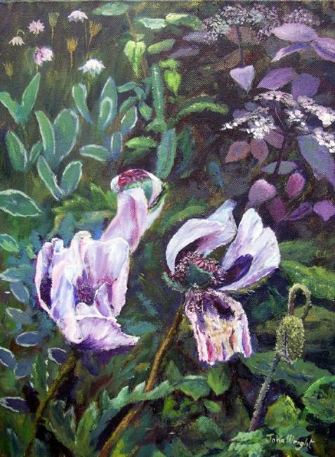 Art: Pale Poppies by Artist John Wright
