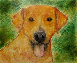 Art: Yellow Dog by Artist Melinda Dalke