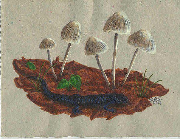 Art: Blueberry Stroll (SOLD) by Artist Jackie K. Hixon