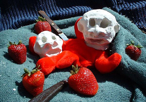 Art: Strawberry Fields Forensic by Artist Elisa Vegliante