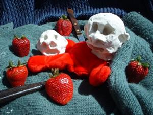 Detail Image for art Strawberry Fields Forensic
