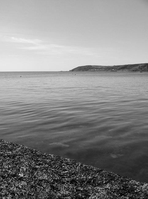 Art: Mounts Bay, Penzance by Artist Laura T