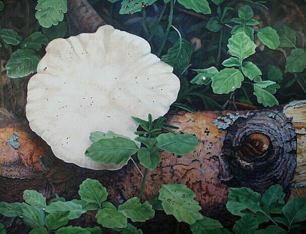 Art: Log and fungus by Artist Harlan