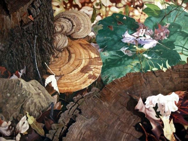 Art: Tree Fungus by Artist Harlan