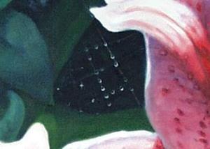 Detail Image for art Stargazers