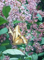 Art: Butterfly and Lilacs by Artist Harlan