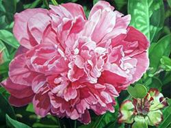 Art: Peony with Ant. Oil Painting by Artist Harlan