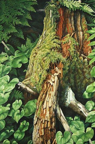 Art: Alaskan Fern and Log - Oil Painting by Artist Harlan