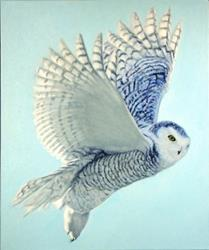 Art: Hope has Wings - Oil Painting by Artist Harlan