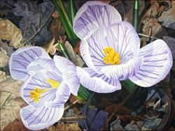 Art: Heralds of Spring - oil painting by Artist Harlan