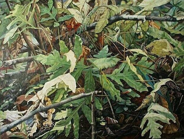 Art: Ferns - oil painting by Artist Harlan