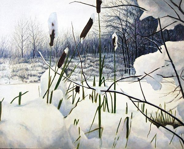 Art: Winter Cattails - oil painting by Artist Harlan