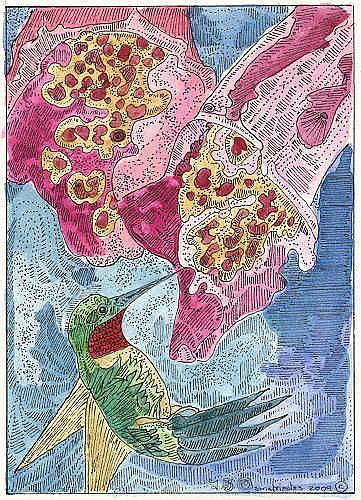 Art: Foxglove with Hummingbird by Artist Theodora Demetriades