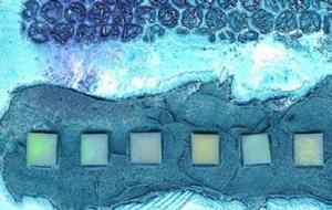 Detail Image for art Clallam Bay V ~ From the Impressions Series