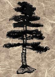 Art: Carved bonsai pine on rice paper - soft block carving print by Artist Karen Winters