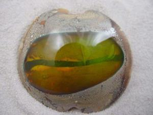 Detail Image for art Ambrosia *GOLDEN EYE* Handmade Lampwork FOCAL Bead - SOLD