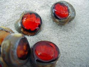 Detail Image for art Ambrosia *RUBY EYES* Lampwork Beads Handmade