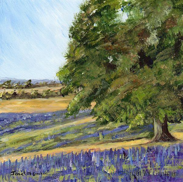 Art: Lavender Fields by Artist Janet M Graham