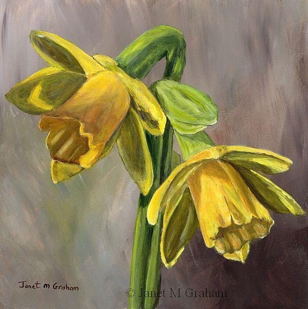 Art: Daffodils by Artist Janet M Graham