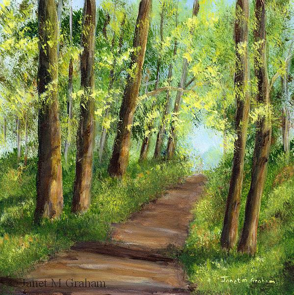Art: Walk through the Woods by Artist Janet M Graham