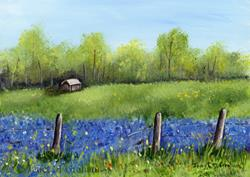 Art: Bluebonnet Field by Artist Janet M Graham