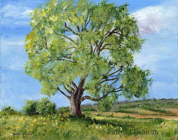 Art: Spring Tree by Artist Janet M Graham