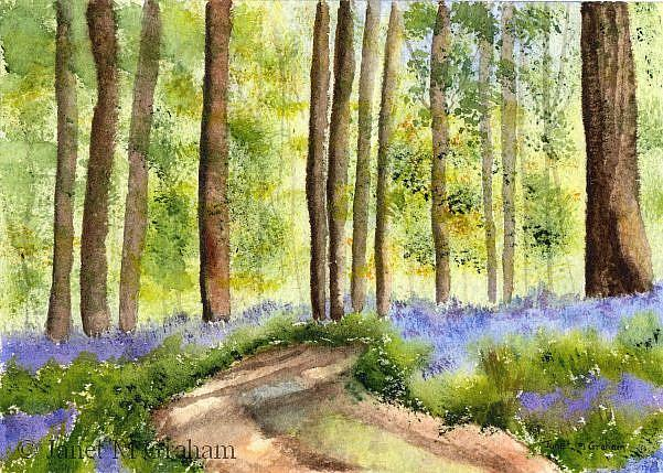 Art: Bluebell Woodlands by Artist Janet M Graham