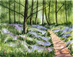 Art: Bluebell Woods by Artist Janet M Graham
