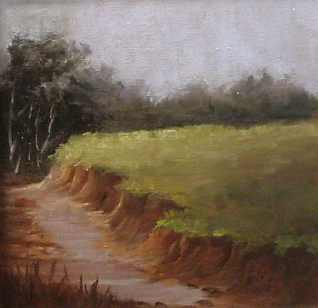 Art: Eroded Bank Study  by Artist Barbara Haviland