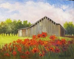 Art: Poppies and a Gray Barn by Artist Barbara Haviland
