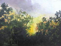 Art: Early Morning  Sun Coming Up Plein Air by Artist Barbara Haviland