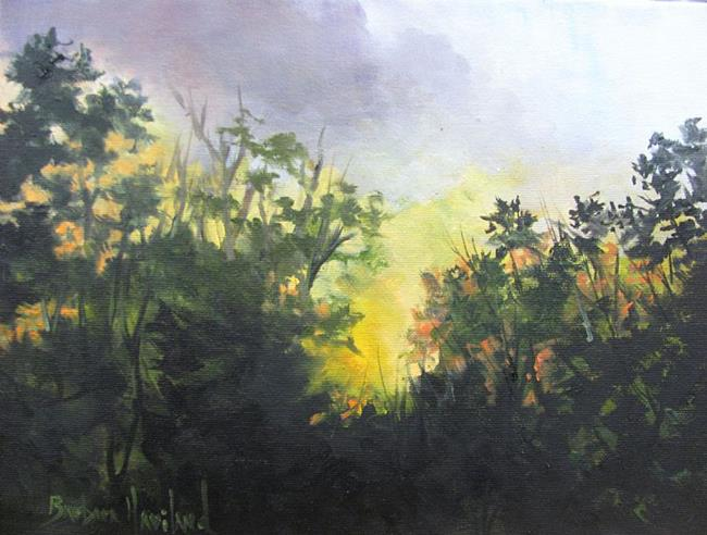 Art: Early Morning  Sun Coming Up Plein Air by Artist Barbara Haviland