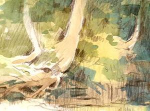 Detail Image for art Rush Creek Pool (plien aire sketch)
