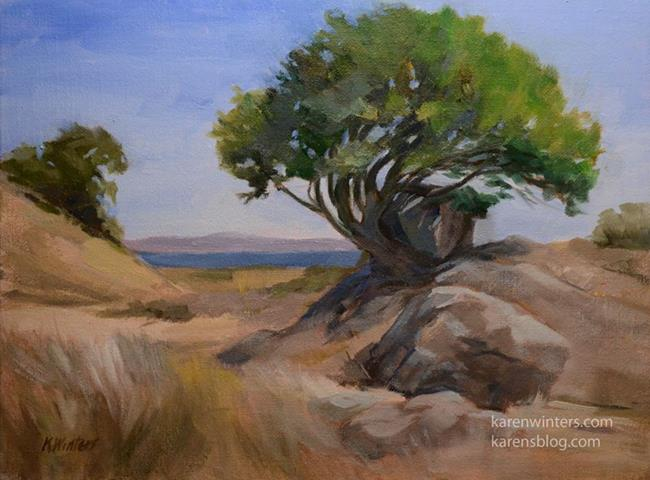 Art: Clinging to the Rock, China Camp State Park oil painting by Artist Karen Winters