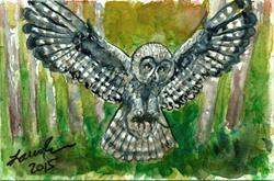 Art: Owl  (SOLD) by Artist Laura Ross