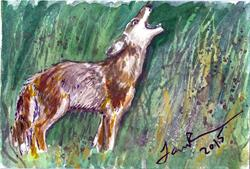 Art: Coyote  (SOLD) by Artist Laura Ross
