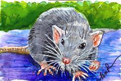 Art: Rat  (SOLD) by Artist Laura Ross