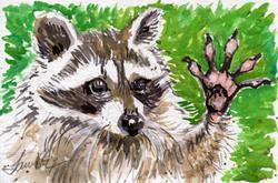 Art: Raccoon waving  (SOLD) by Artist Laura Ross