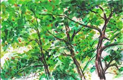 Art: Treetops  (SOLD) by Artist Laura Ross