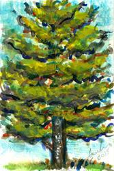 Art: Fir Tree by Artist Laura Ross