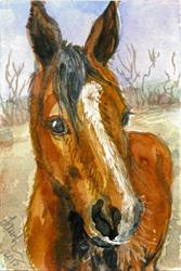 Art: Horse (Sold) by Artist Laura Ross