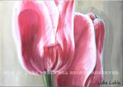 Art: Pink Tulips (s) by Artist Luba Lubin