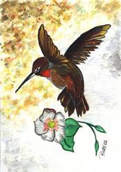 Art: Hummingbird in Landing by Artist Marcia Ruby